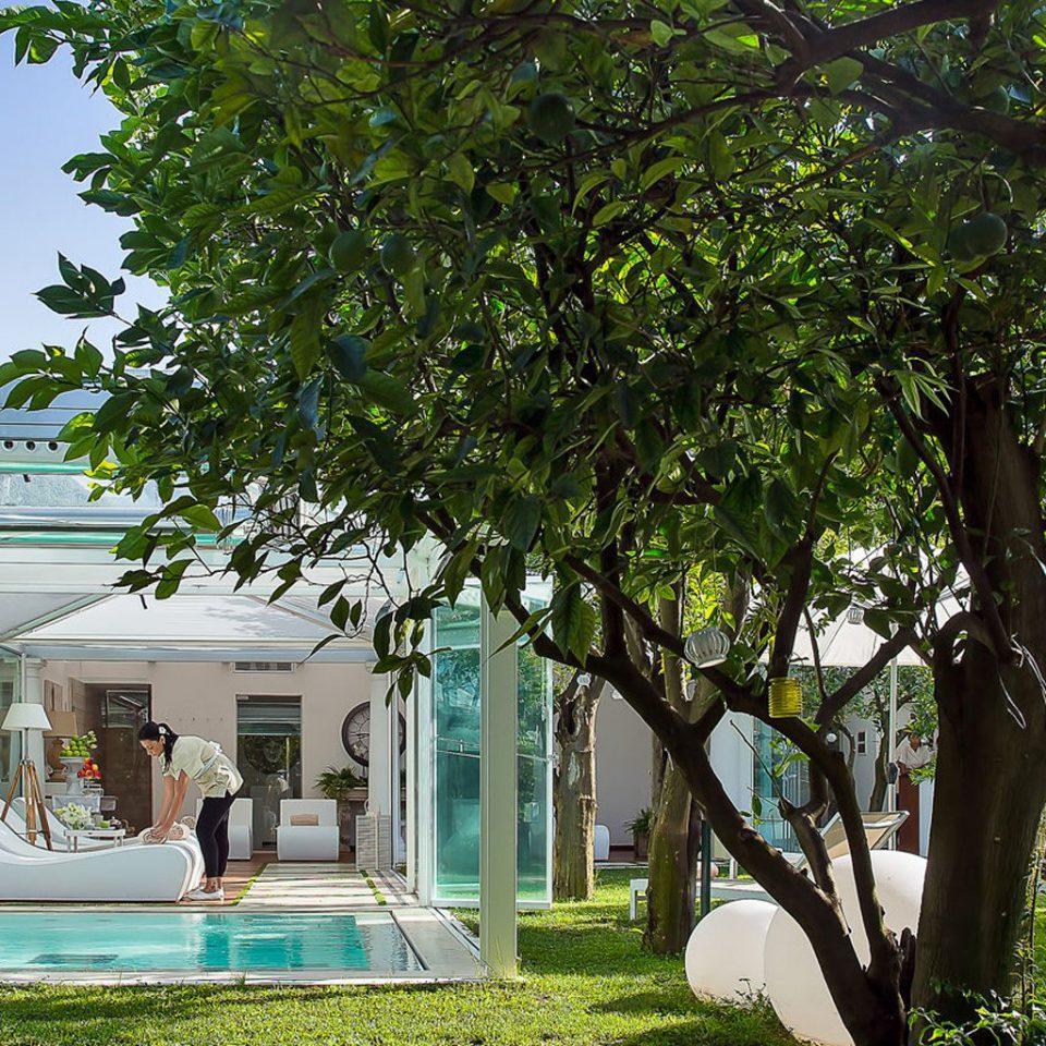tree property house botany home backyard Villa flower Garden Resort Courtyard cottage mansion yard