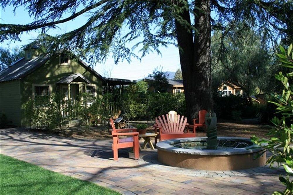 tree property building backyard park Resort home Villa cottage yard eco hotel outdoor structure Garden hacienda Courtyard plant