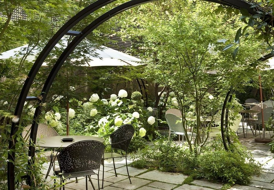 tree property flora botany Garden flower backyard Courtyard floristry arch yard outdoor structure landscape architect Villa plant surrounded shade