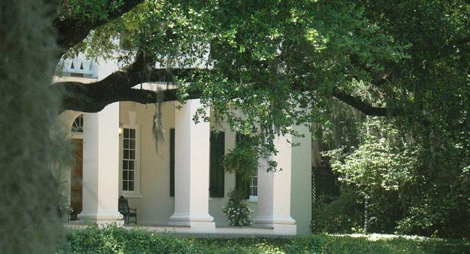 tree property house home Courtyard cottage Garden Villa mansion yard backyard lawn plant shrub
