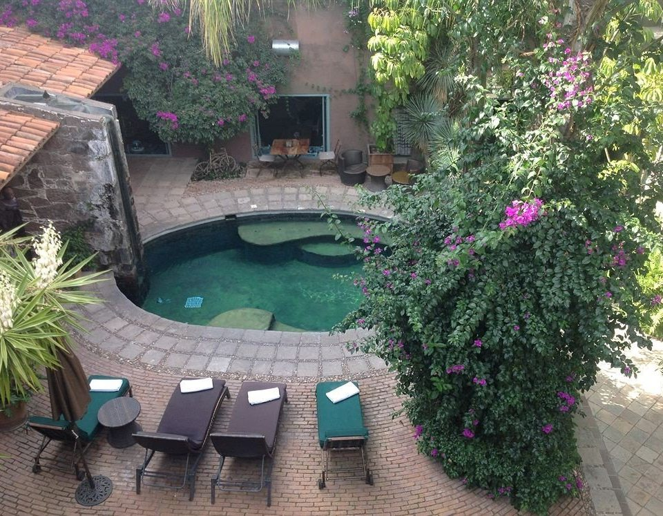 tree plant property swimming pool backyard Garden yard flower Villa Courtyard cottage outdoor structure bushes stone