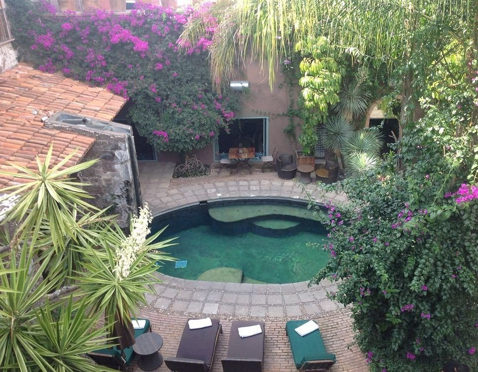 tree swimming pool property backyard plant yard Garden pond Courtyard Villa cottage outdoor structure landscape architect lawn flower landscaping surrounded bushes stone