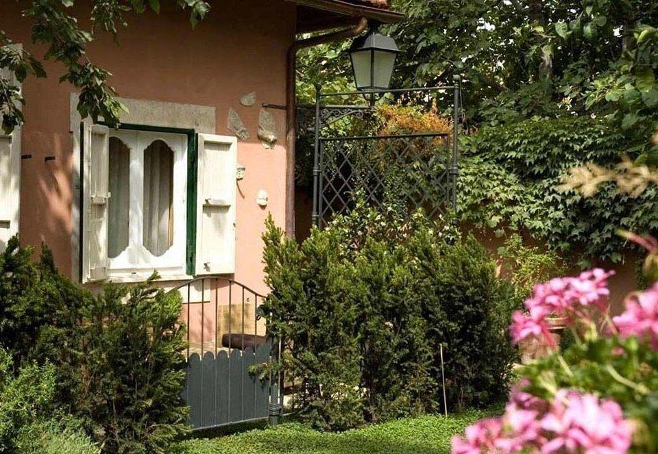 tree flower property plant house home cottage yard Garden backyard Villa Courtyard residential area bushes Village shrub lawn