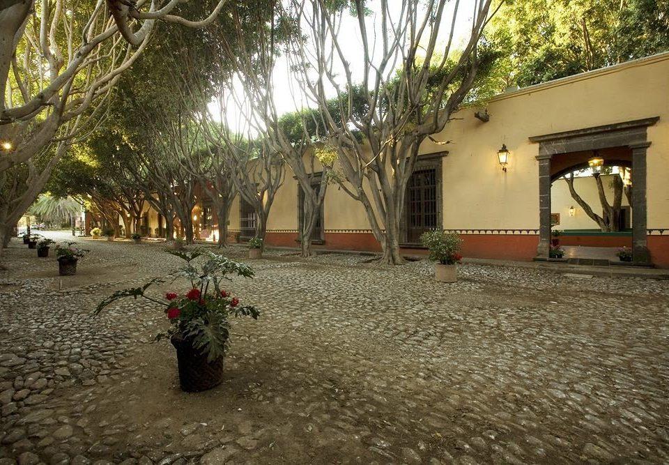 tree ground property house Courtyard hacienda screenshot mansion plant