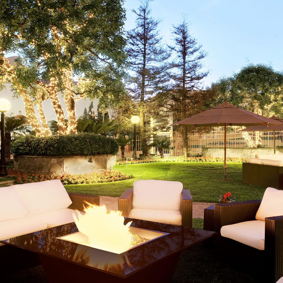 Grounds Lounge Outdoors Patio Resort tree property building backyard Villa home hacienda Courtyard outdoor structure mansion