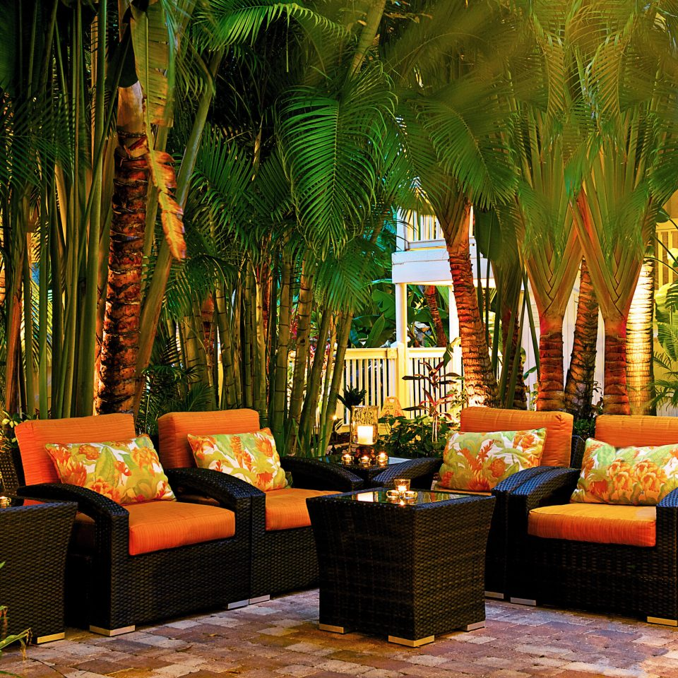Courtyard Hotels Inn Lounge Patio Trip Ideas tree backyard living room landscape lighting Resort flower plant leather