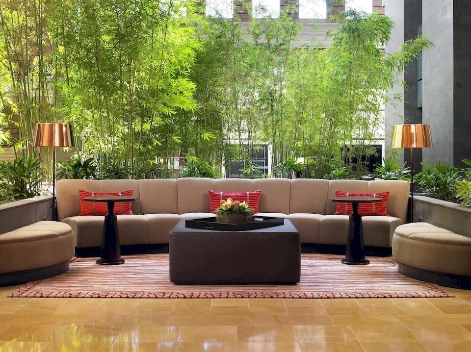 tree property living room home backyard outdoor structure condominium Courtyard Lobby arranged