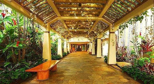 building Lobby plant Resort mansion palace hacienda eco hotel Courtyard
