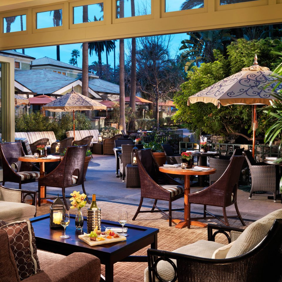 Lounge Luxury Modern tree chair leisure property Resort restaurant home backyard Courtyard condominium Villa