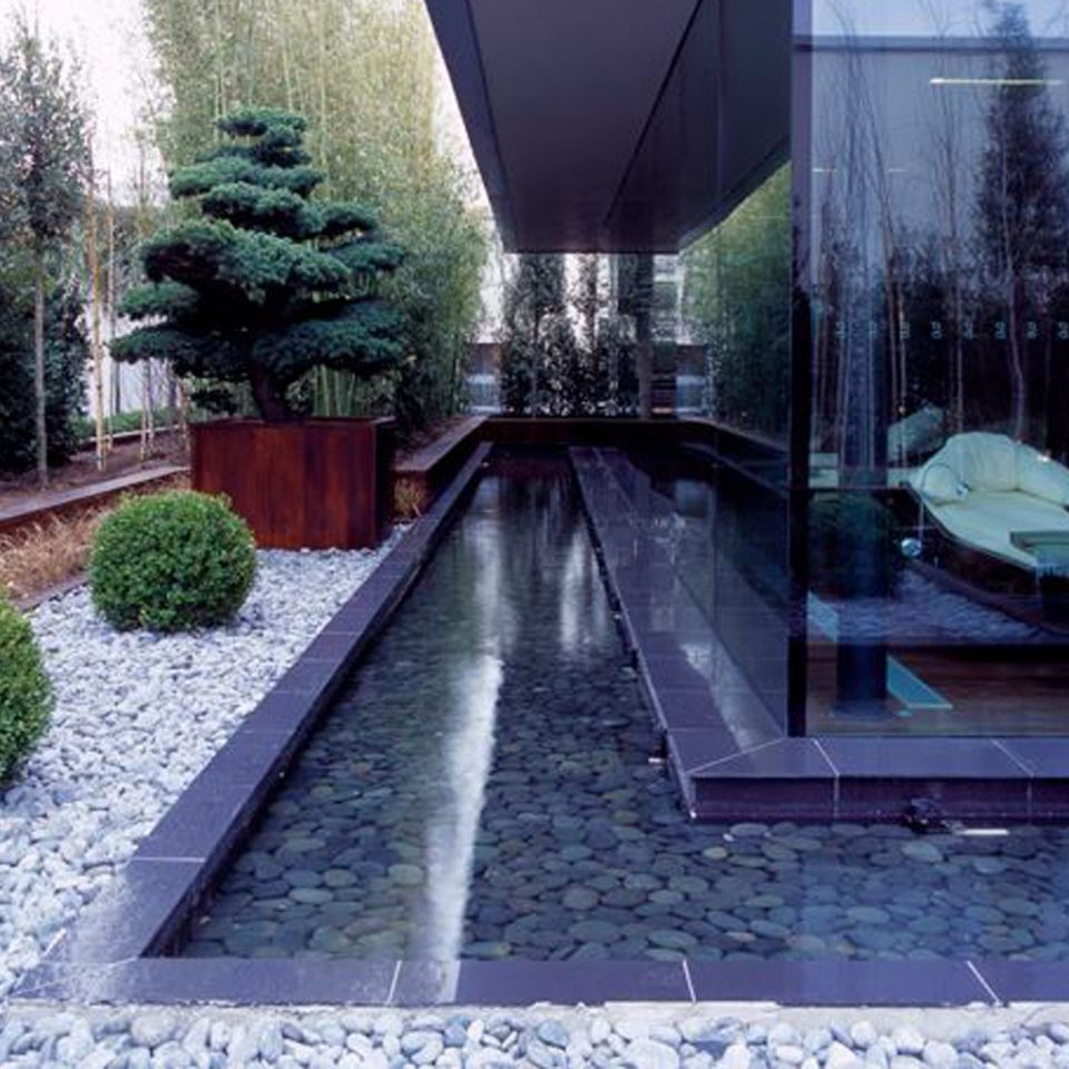 Luxury Modern Spa Wellness tree swimming pool backyard Courtyard mansion