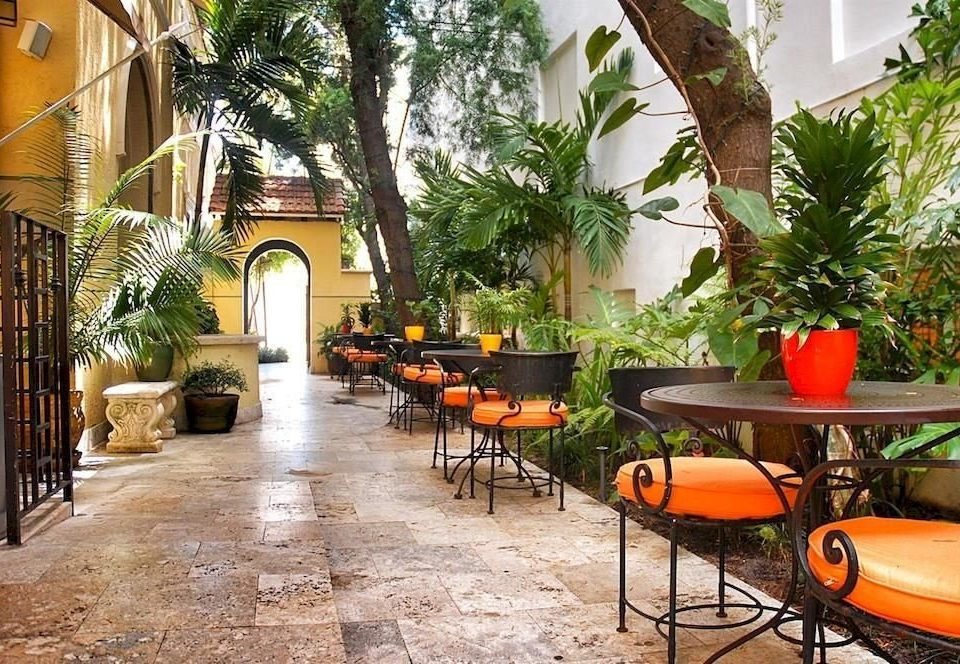 tree ground property chair building Courtyard hacienda home Villa restaurant backyard plant Resort outdoor structure Patio cottage orange stone