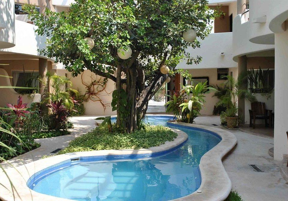 Pool tree swimming pool property building Villa condominium Resort backyard Courtyard home hacienda mansion bathtub
