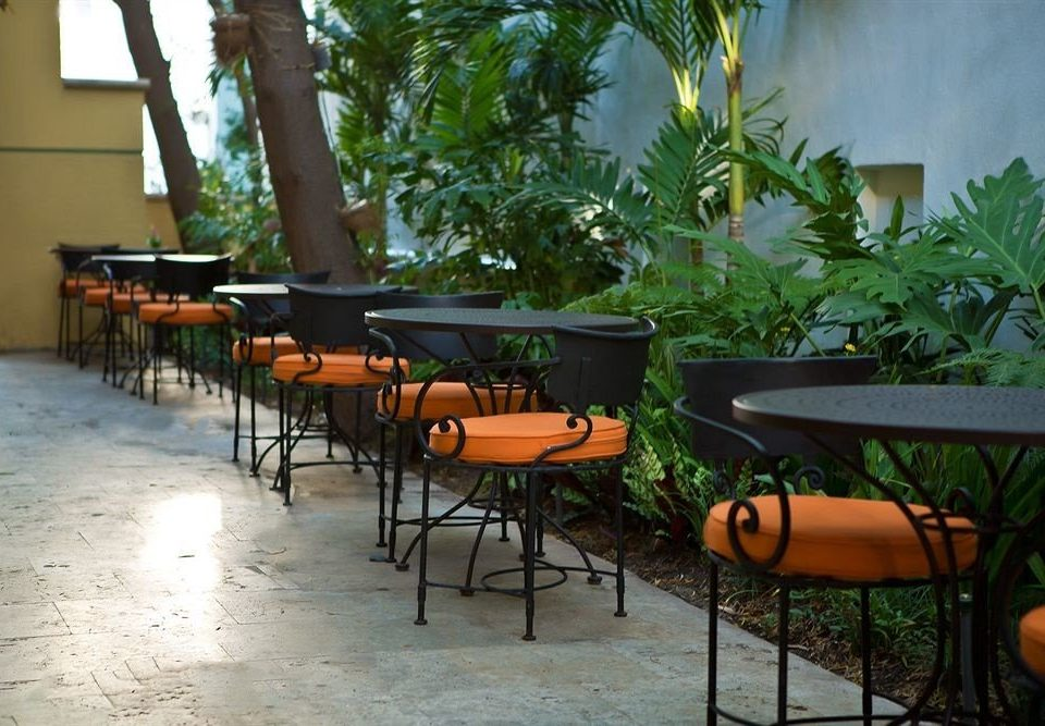chair restaurant backyard Resort outdoor structure Courtyard Villa porch plant dining table