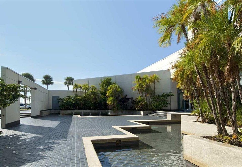 tree sky ground property palm Villa condominium home Resort swimming pool Courtyard residential area hacienda backyard