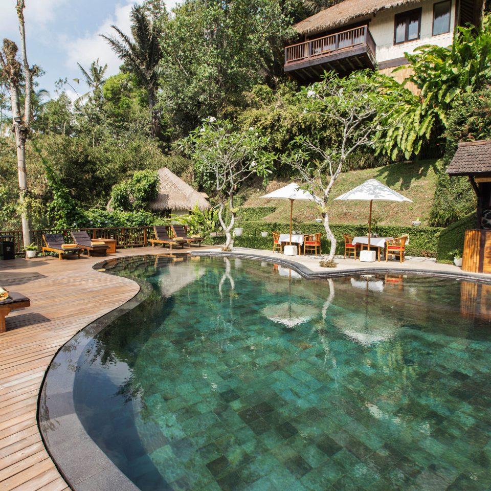 tree swimming pool property Resort reflecting pool backyard Villa mansion Courtyard eco hotel