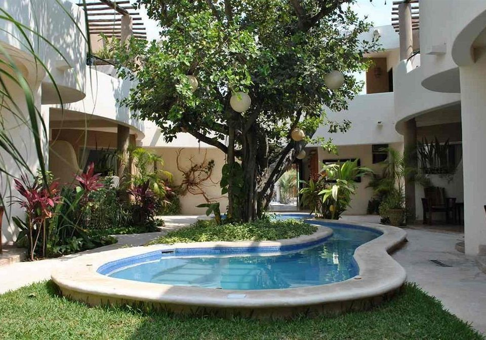 tree swimming pool property backyard condominium Villa Courtyard reflecting pool home Resort mansion hacienda yard plant