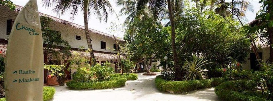 tree house property plant Resort street neighbourhood Village residential Courtyard hacienda Villa cottage restaurant palm