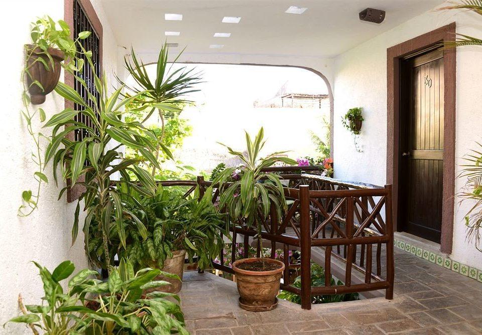 plant property Courtyard pot home cottage Villa condominium porch