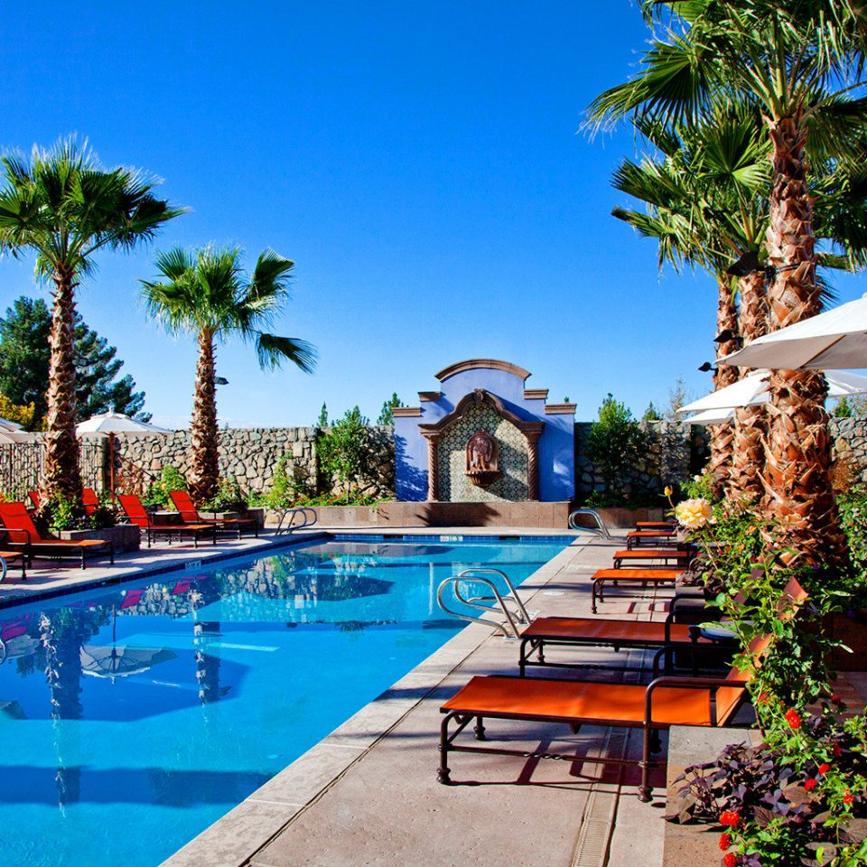 Cultural Desert Lounge Pool tree sky leisure swimming pool Resort arecales Villa Water park palm lined swimming
