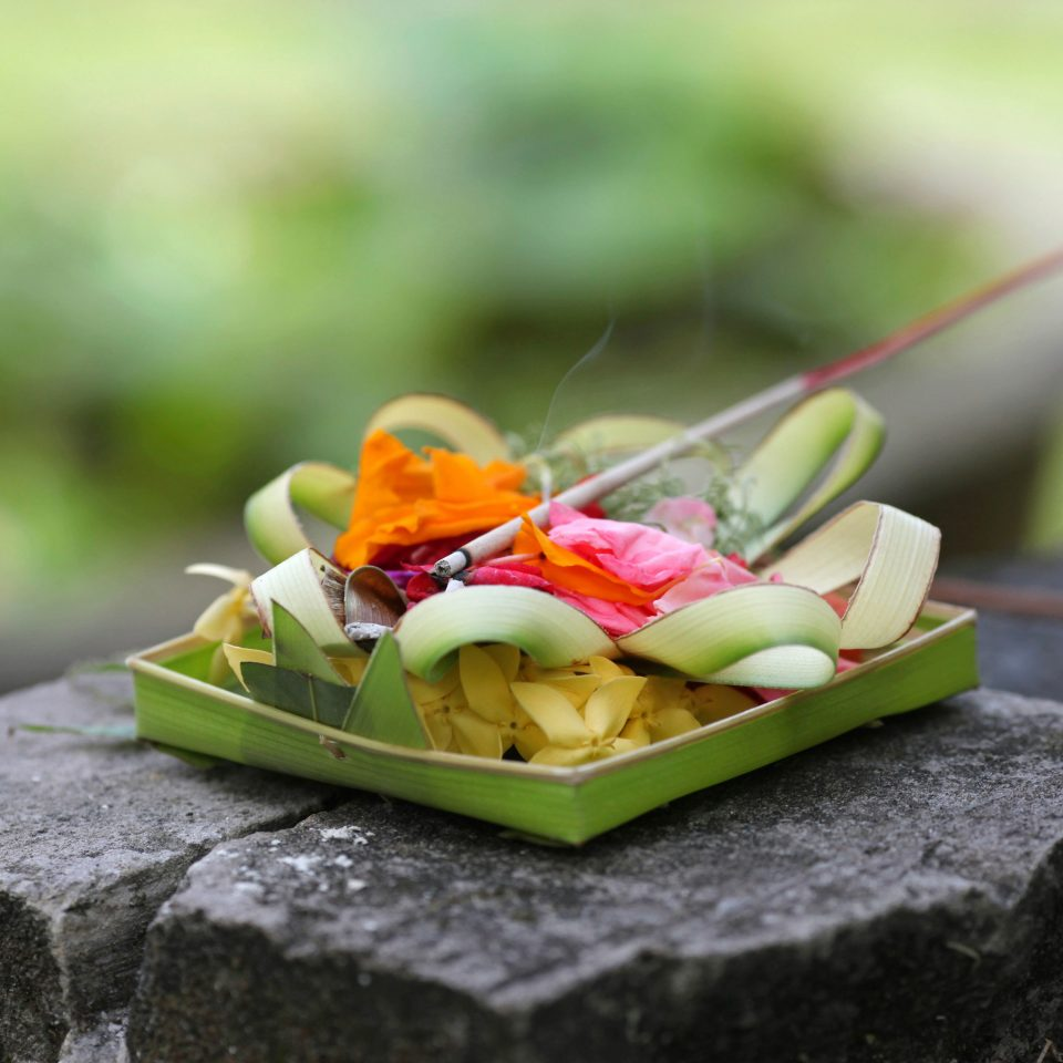 Cultural Eco Island Jungle Scenic views Wellness green piece yellow food flower leaf slice macro photography cuisine dessert