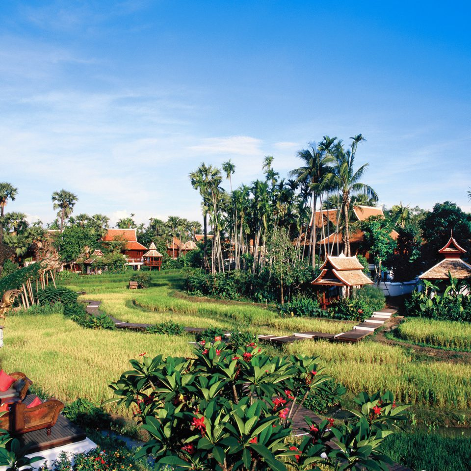 Cultural Grounds Hotels Outdoors Romance Scenic views grass sky tree Resort residential area Village arecales agriculture rural area Garden plant flower plantation lawn tropics Farm Jungle lush