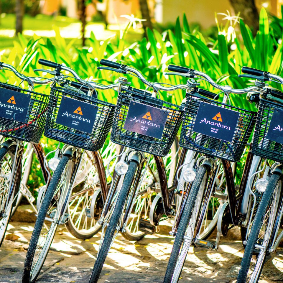 Cultural Jungle Outdoor Activities River Tropical Village Waterfront parked bicycle cycling vehicle row colorful lined