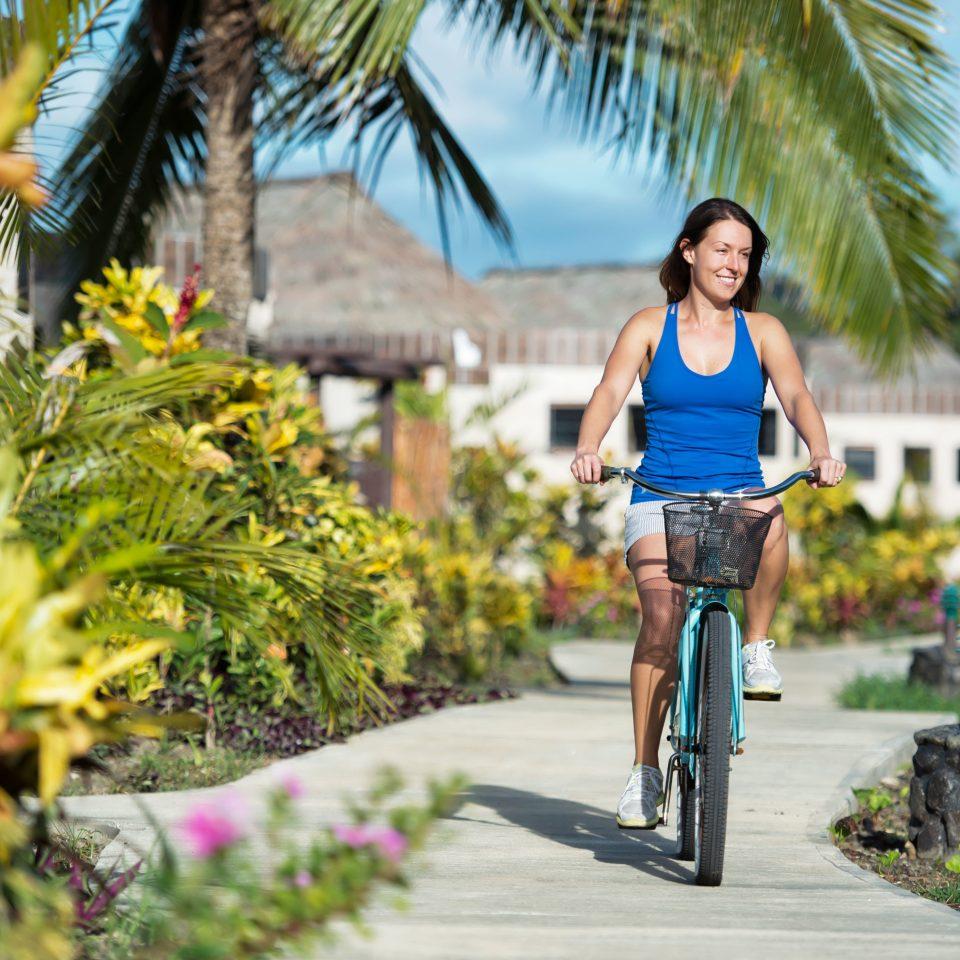 tree road leisure riding street plant endurance sports vehicle cycling palm past