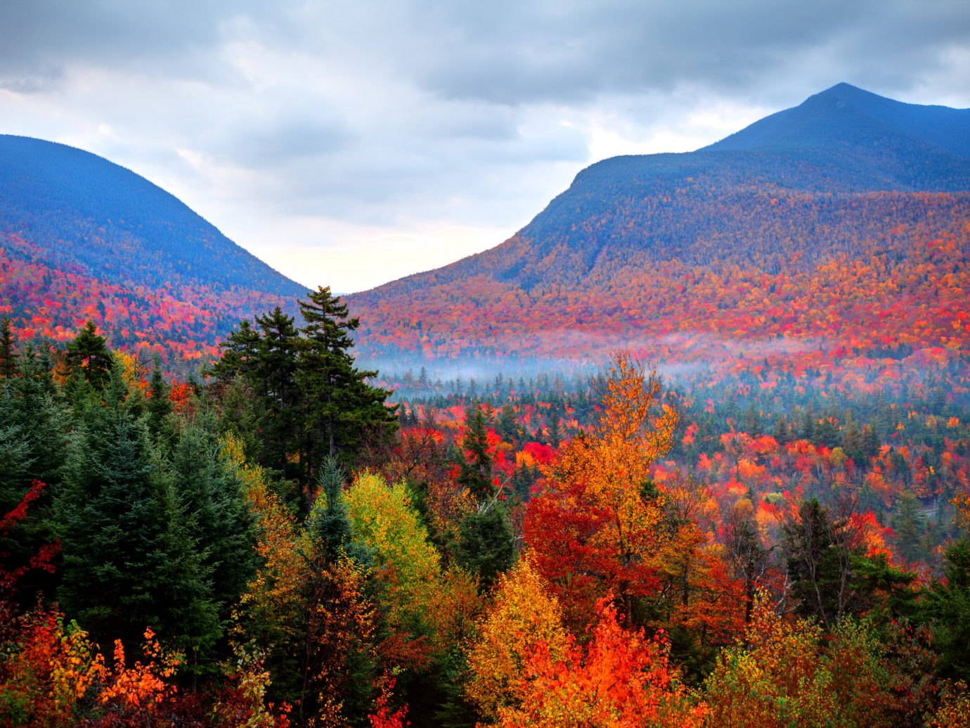 Trip Ideas sky mountain tree outdoor mountainous landforms Nature wilderness geographical feature atmospheric phenomenon ecosystem autumn leaf season background plant Forest woody plant landscape flower valley meadow mountain range ridge sunrise woodland lush highland distance