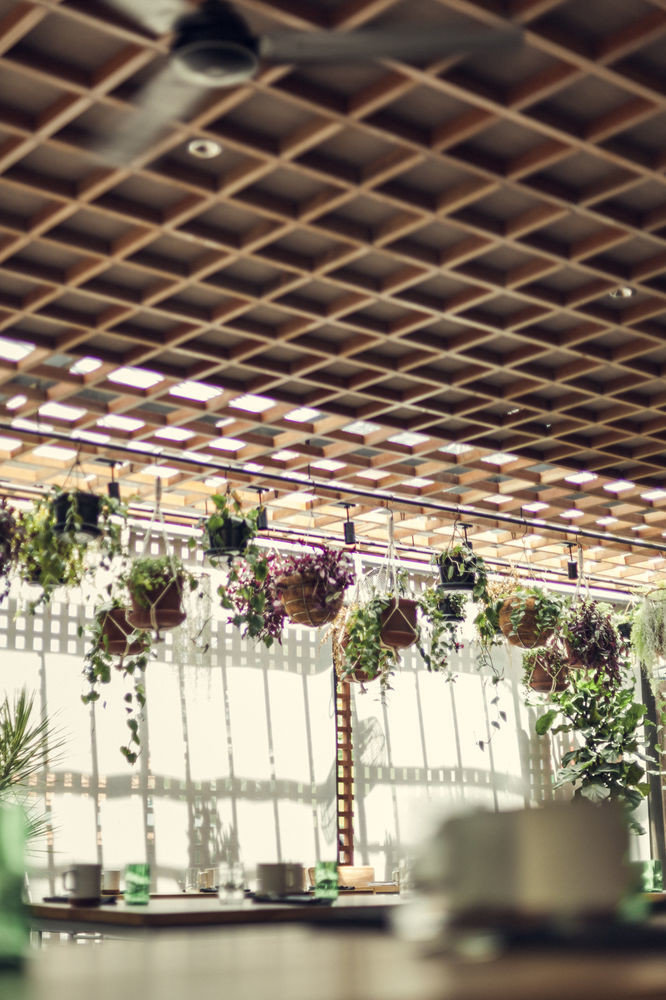 flower roof outdoor structure daylighting plant floristry floral design flower arranging grate
