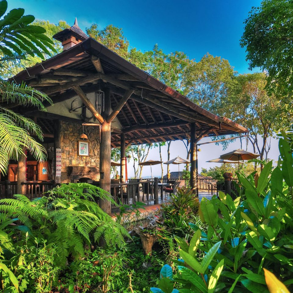 Deck Dining Jungle Outdoors Patio Tropical tree Resort plant botany Garden tropics arecales rainforest green flower hut Village palm lined bushes colorful