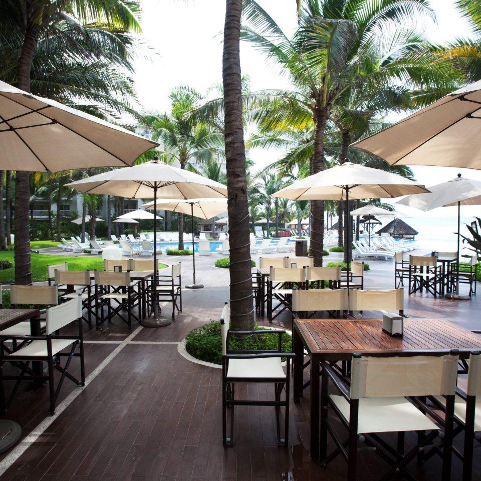 tree chair restaurant Dining Resort building green outdoor structure Deck porch set