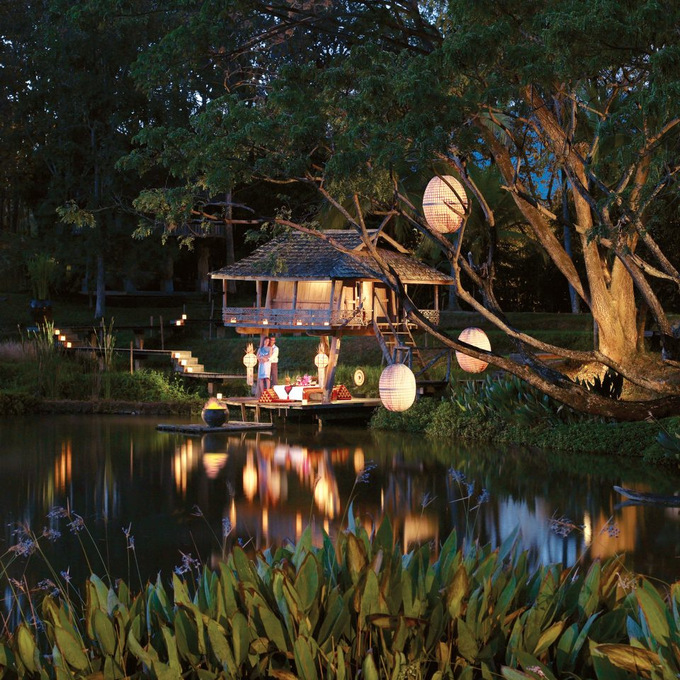 Deck Elegant Exterior Grounds Honeymoon Jungle Luxury Romance Romantic Tropical Waterfront tree water Nature pond night River flower evening autumn waterway Lake surrounded