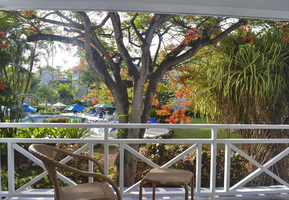 tree chair building flora botany Garden flower Resort porch botanical garden Deck set