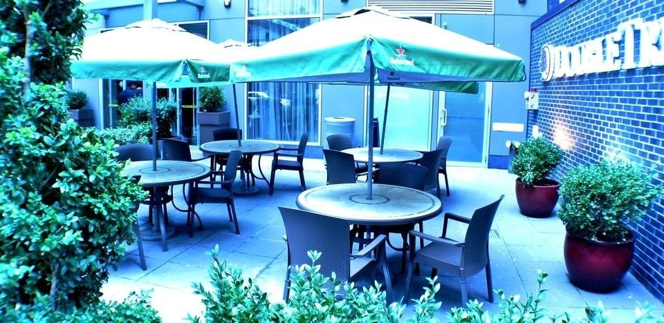 tree chair leisure Resort plant restaurant blue Deck shade