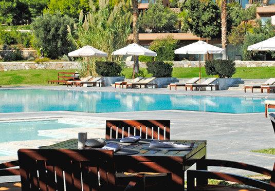 tree chair leisure swimming pool property Resort Villa backyard empty set Deck