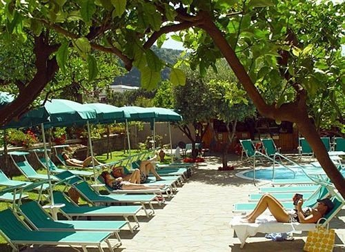 tree chair leisure Resort Water park eco hotel lawn lined Deck shade