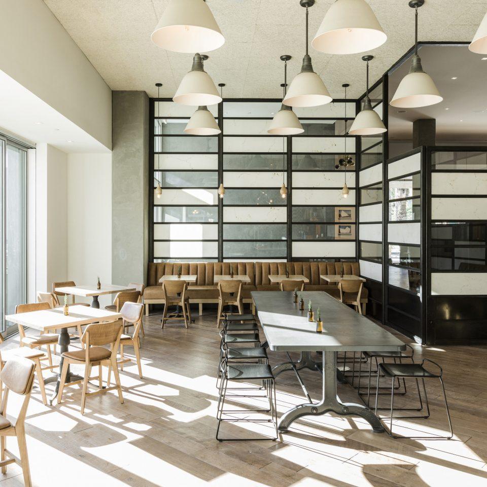 chair Dining café restaurant interior designer