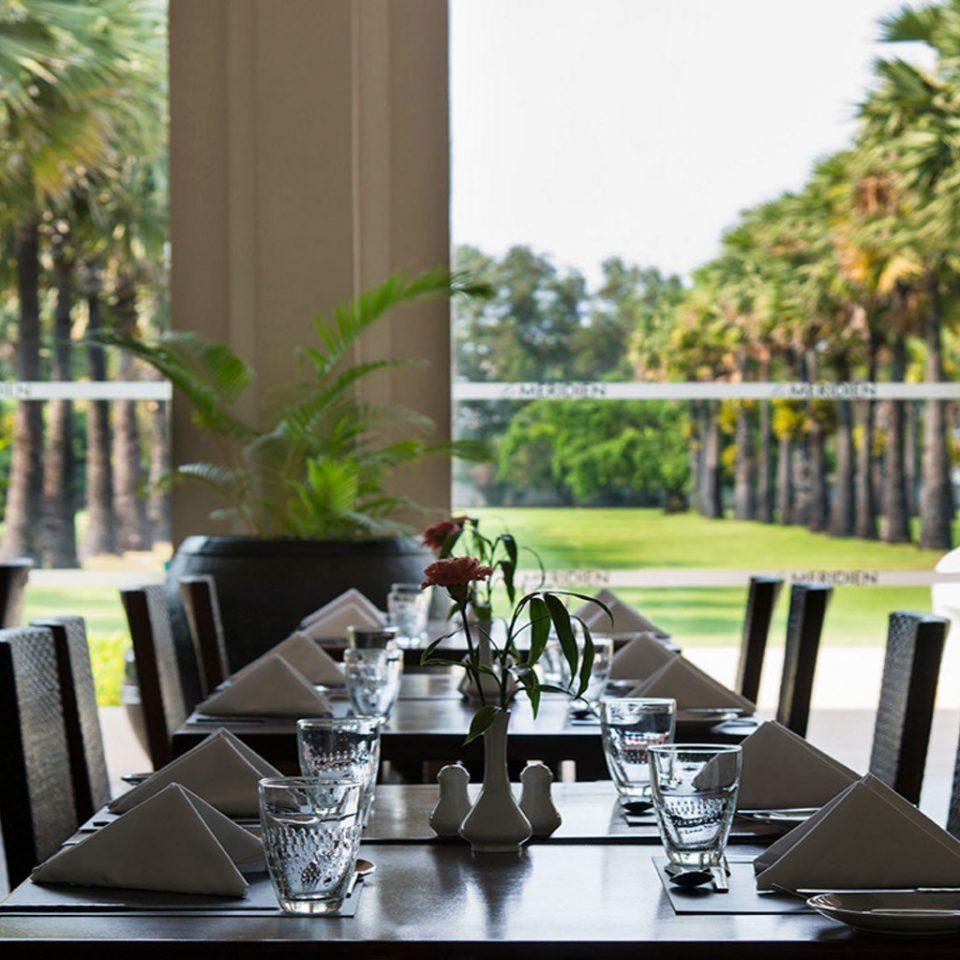 tree Dining chair restaurant home set rehearsal dinner condominium dining table dinner