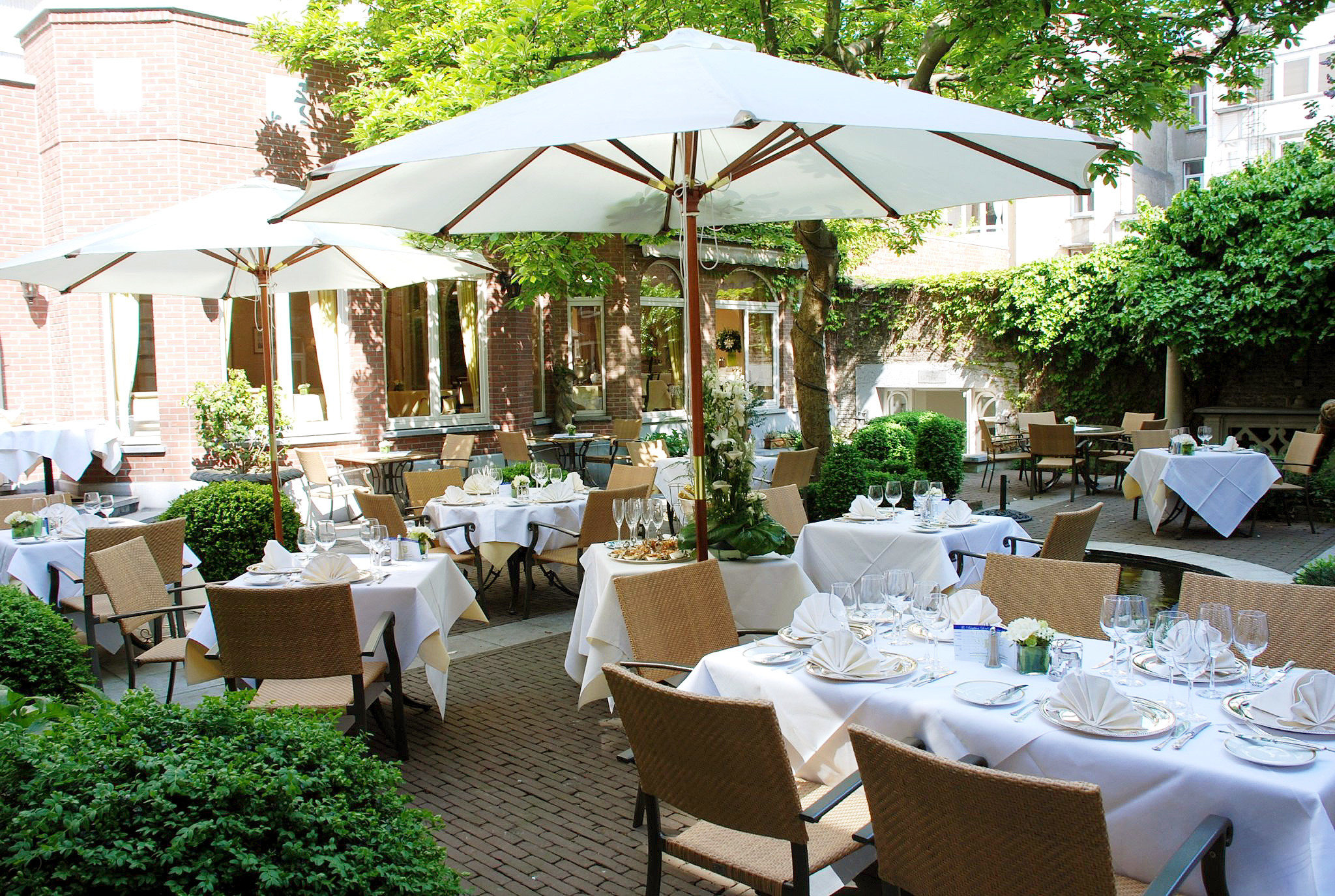 Dining Drink Eat Elegant tree restaurant floristry Resort backyard flower set