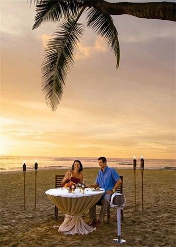 Dining Drink Eat Elegant Luxury sky tree plant horizon morning Ocean arecales Sea Sunset sunlight wind Romance shore palm sandy