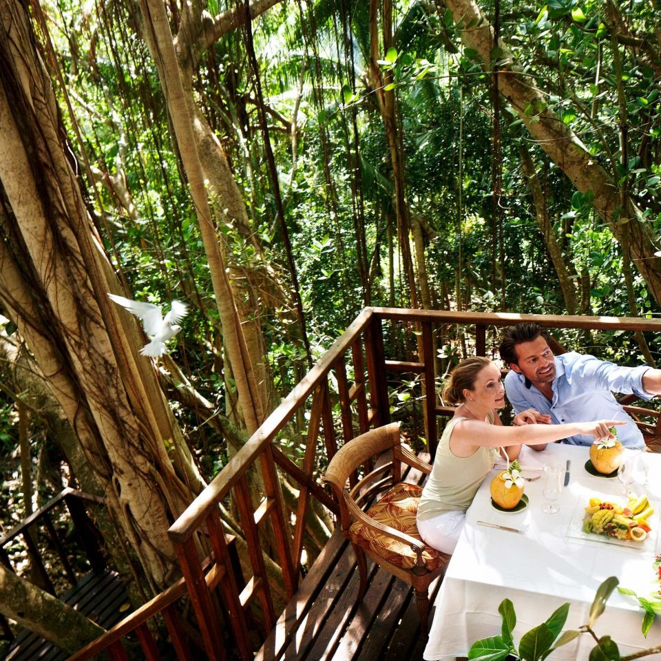 Dining Drink Eat Honeymoon Island Jungle Outdoors Romance Romantic tree habitat rainforest Forest plant woodland flower backyard
