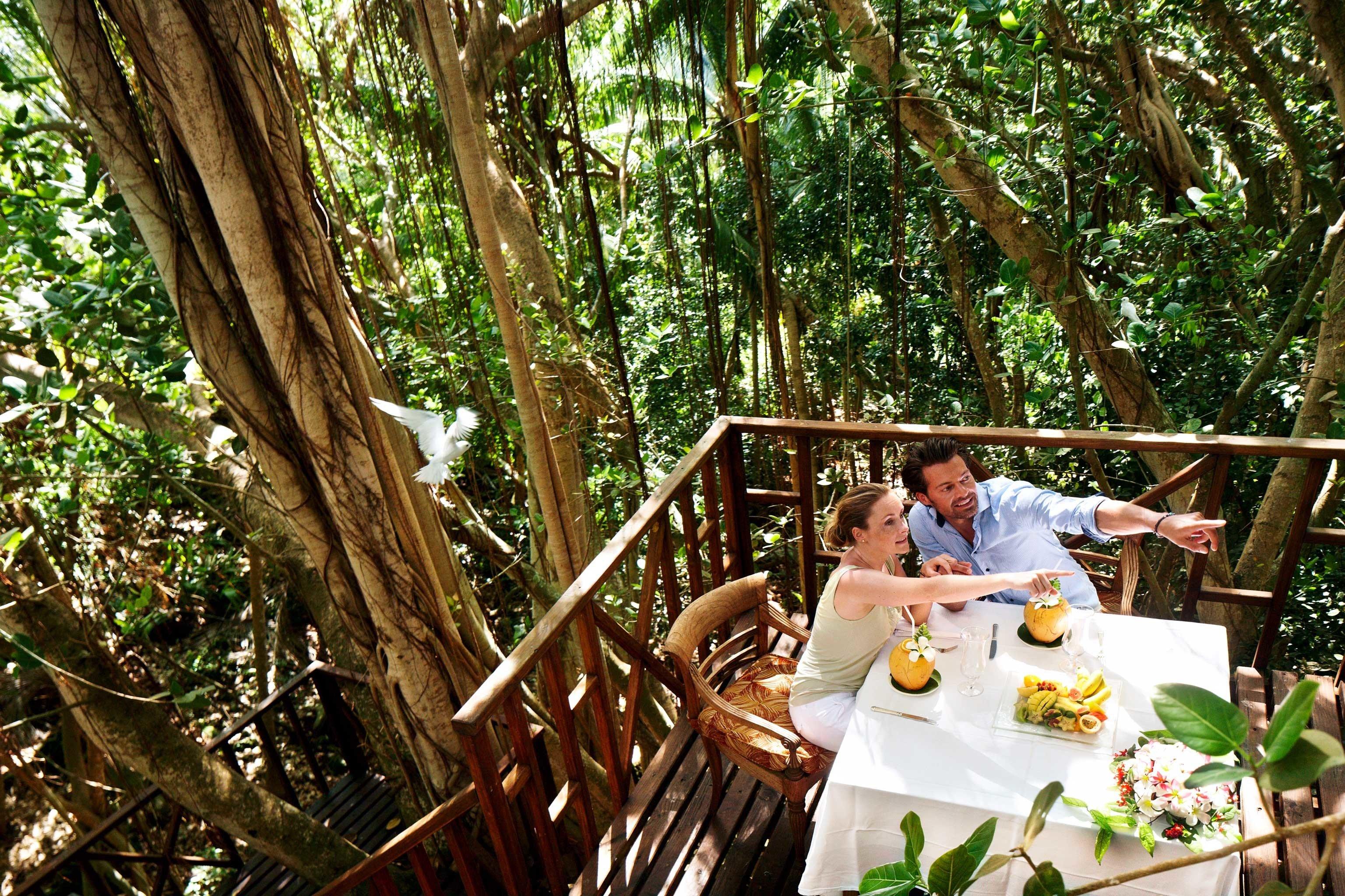 Dining Drink Eat Honeymoon Island Jungle Outdoors Romance Romantic tree habitat rainforest Forest plant woodland flower backyard