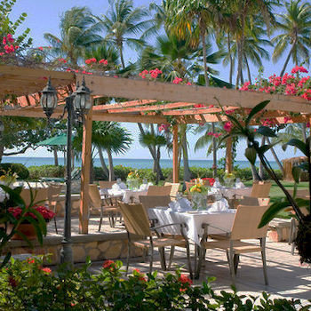 Dining Drink Eat Outdoors Patio Resort tree palm plant property restaurant hacienda caribbean Villa eco hotel flower Garden shade