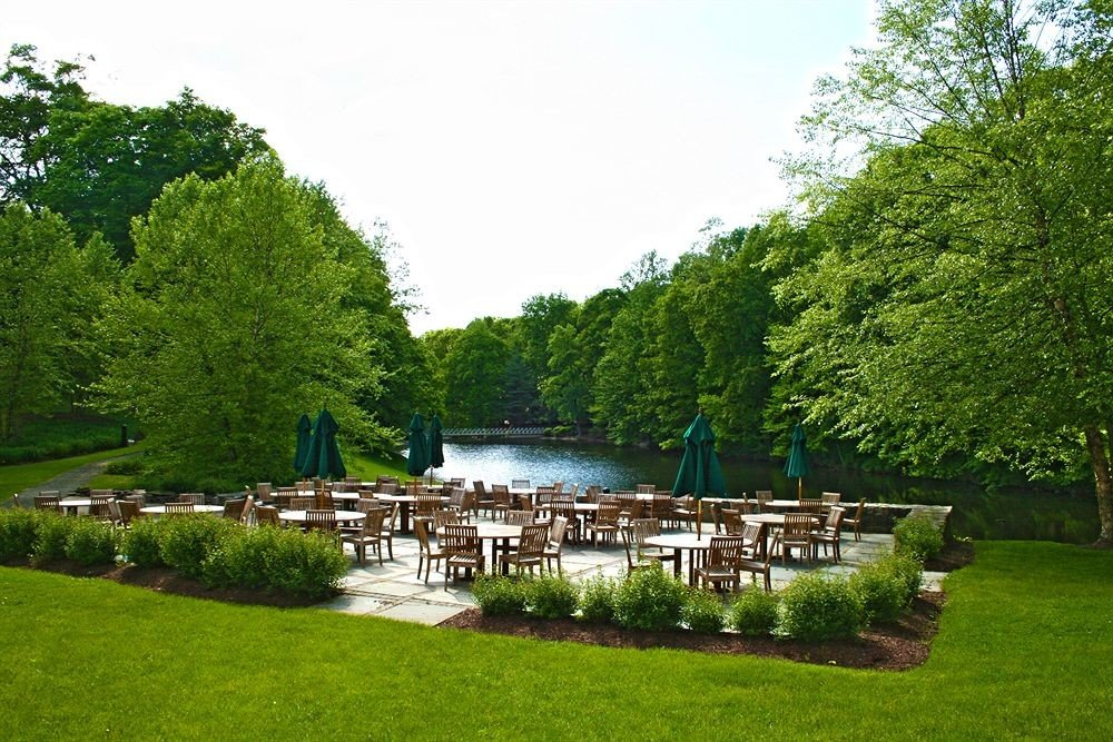 Dining Drink Eat Nature Outdoors Waterfront tree grass sky green park Garden lawn backyard pond plant flower botanical garden cottage old lush surrounded