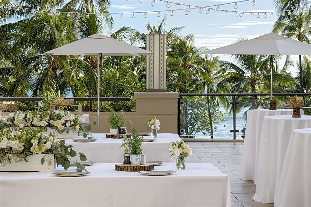 Dining Drink Eat Lounge Resort Rooftop tree restaurant wedding floristry home flower