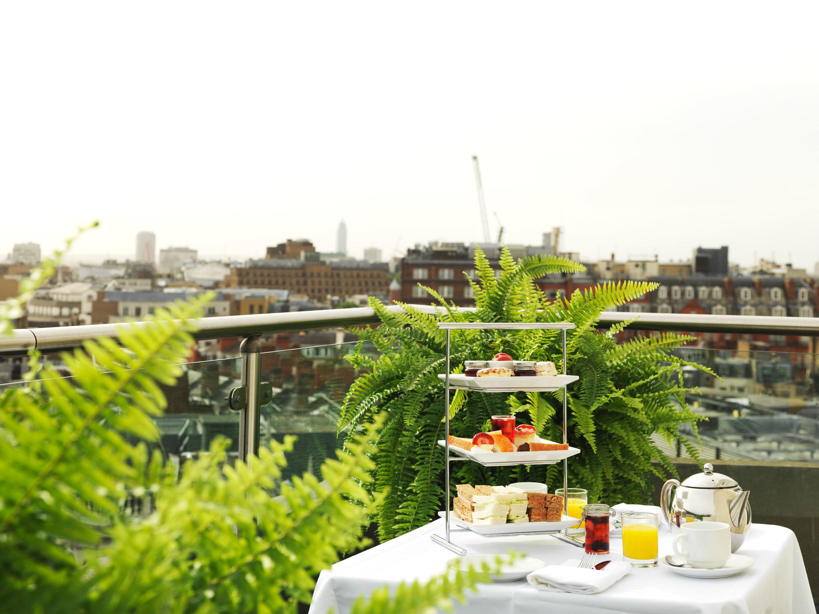 Dining Drink Eat Modern sky Resort flower