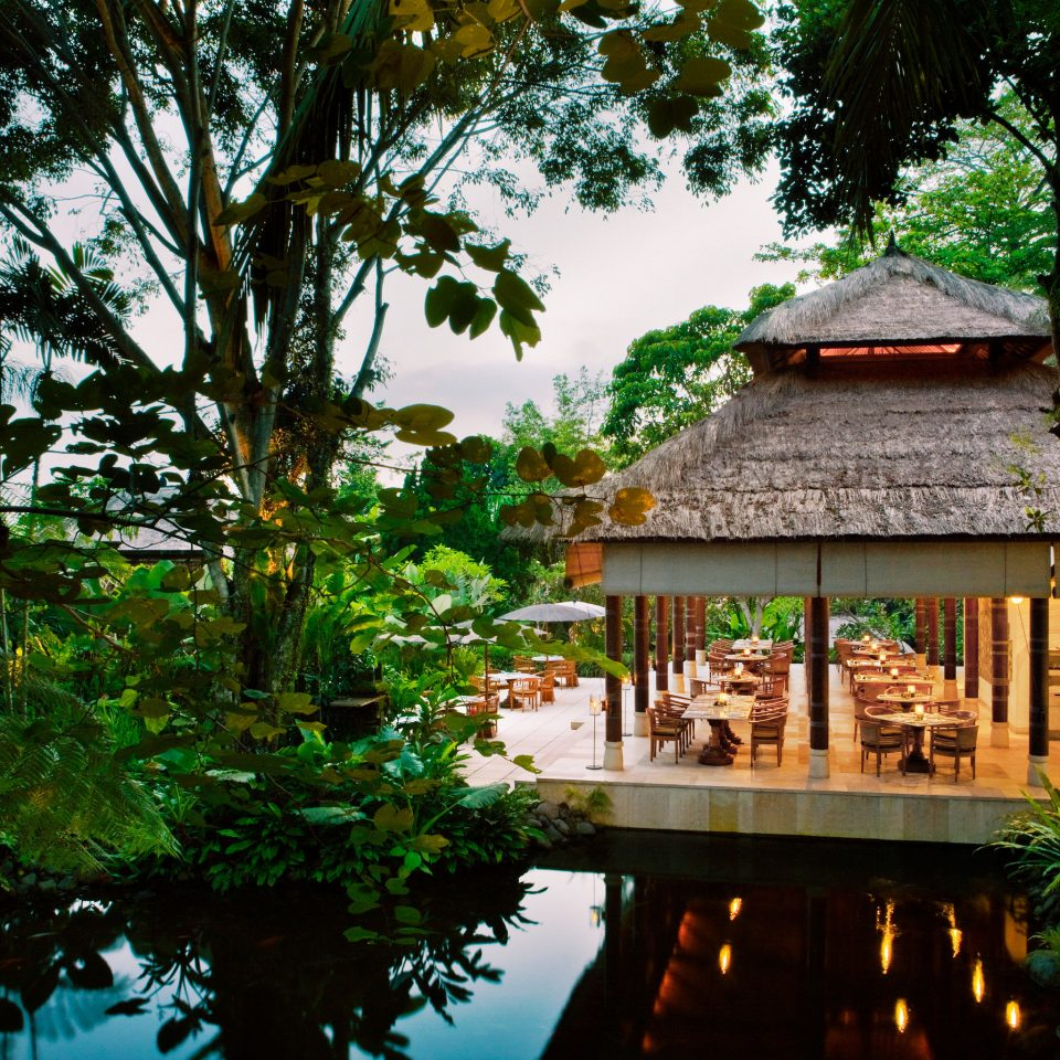 Dining Honeymoon Luxury Pool Romance Romantic tree habitat building natural environment house botany Jungle Forest Resort Garden rainforest tropics flower temple plant
