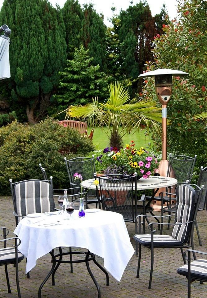 tree chair backyard Garden floristry yard restaurant outdoor structure home flower Dining set dining table surrounded