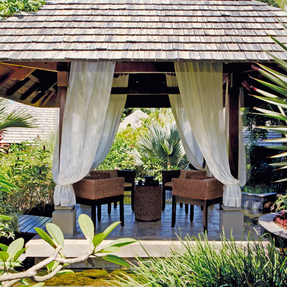 Dining Grounds Island Luxury Romance Romantic tree umbrella Resort plant house wooden backyard cottage home Garden Jungle outdoor structure hut flower shade