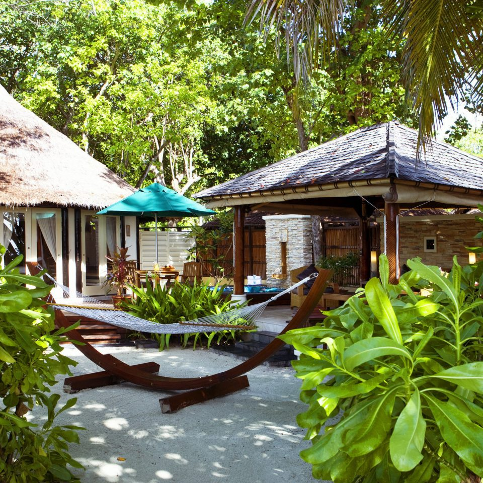 tree Resort Garden botany house Jungle cottage backyard wooden lawn plant rainforest eco hotel Village Dining flower yard botanical garden tropics surrounded